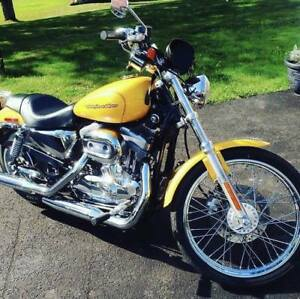 2005 Sportster 883 w/ a big bore kit