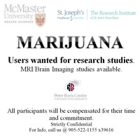 Marijuana users wanted for research study- compensation provided