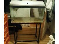 fish tank 30x15x12 inches with hood light and stand
