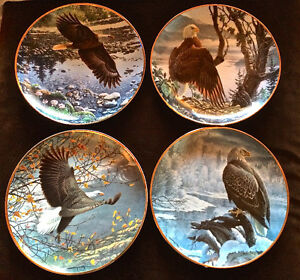 Seasons of the Bald Eagle by John Pitcher