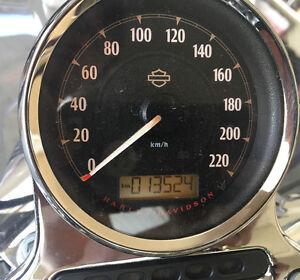 2015 super low Harley Davidson