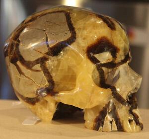 Crystal Skulls London Ontario image 8