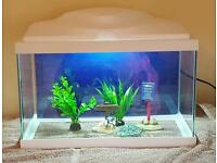ciano 17 Ltr tank ideal for shrimp or small fish. tropical/cold-water