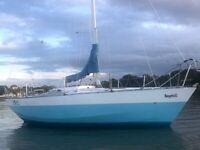 E - Boat sailing boat