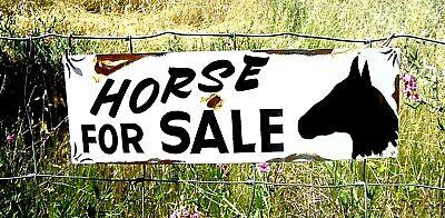Vintage Ranch Primitive HORSE FOR SALE Barn Stable Painted Farm sign Decor
