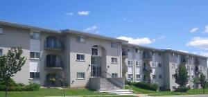 520 Parkside Drive - Two Bedroom Apartment Apartment for Rent