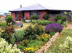 Commuters Dream ! Affordable,  House on 6070 sqm land. Cressy Northern Midlands Preview