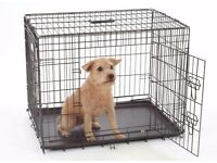 Small black dogs crate