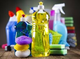 Experienced Domestic, Office and Commercial Cleaner (DBS Approved). Greater Manchester