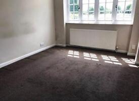 One bed room to let