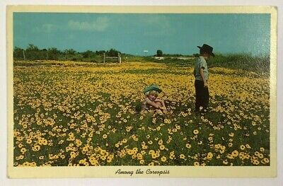 Postcard Texas Children Cowboy Hats Among The Yellow Coreopsis Hill Country TX](Children Cowboy Hats)