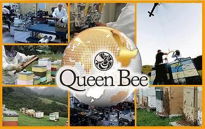 Manuka Honey Mgo 550  500G 17 637 Oz  Equivalent To Umf16   Fast Free Shipping