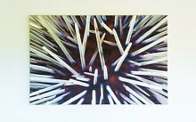 "Glen Cowans ""Spear Sphere"" Canvas 1500mm x 965mm Scarborough Stirling Area Preview"