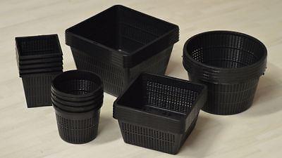 25 Pflanzkörbe - 5 verschiedene Größe von 11 - 23 cm | Teichpflanzen |Pflanzkorb