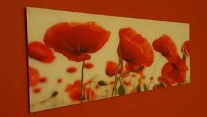 Vibrant Large Poppies Print Laminated onto Glass Penrith Penrith Area Preview