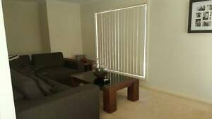 Room available Croydon, $220 per week including bills Croydon Maroondah Area Preview