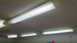 12x Fluorescent light Concord West Canada Bay Area Preview