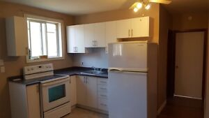 July 1st - 1 bedroom apt Brantford fully renovated all inclusive