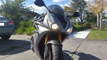 Triumph Daytona 2007 GREY GOLD Templestowe Lower Manningham Area Preview