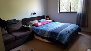 Must See -TwinRoom(Girl only) Master+Ensuite $210pw avail 3 Sep Pyrmont Inner Sydney Preview