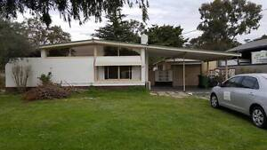 4 (single) room available,5 min walk to kenwick train station Kenwick Gosnells Area Preview
