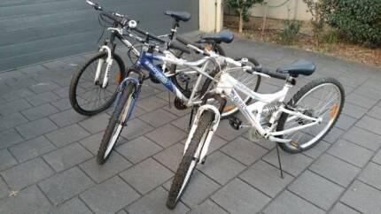 Crane Bikes (Adult/teen size)