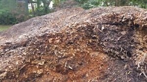 Mulch from trees Tewantin Noosa Area Preview