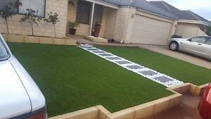 Superior Lawn Grass Bibra Lake Cockburn Area Preview