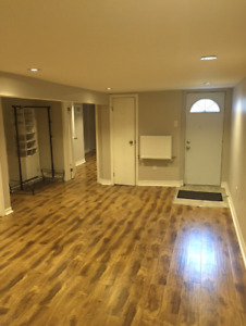 Large Basement Apartment (Downtown TO)