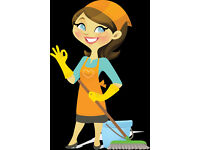 Friendly and experienced DOMESTIC CLEANER/HOUSE KEEPER