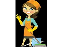 Commercial and Domestic Cleaners! One off and regular Cleaning Services and more!