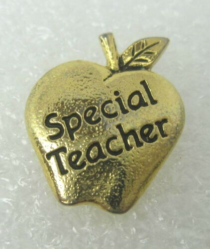 Special Teacher Lapel Pin (A643)