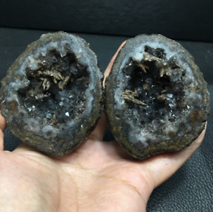 Geodes, Fossils and More