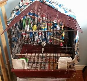 Moving far and dont want to stress Birds. Good Home Needed!