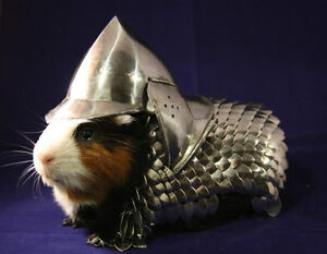 Hand-made-Guinea-Pig-Scale-Mail-and-Helmet-Armor
