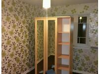 Cleaner/Painter, wallpaper hanging and stripping/decoration