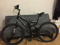 muddyfox neptune mountain bike