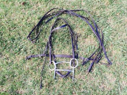 Double Rein Bit and Bardoon Bridle Dangarsleigh Armidale City Preview