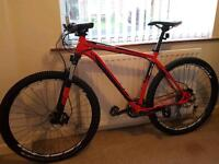 SPECIALIZED Rockhopper XL MTB