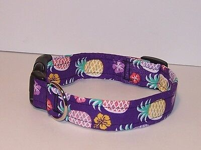 Wet Nose Designs Tropical Pineapple Dog Collar Tropics Hawaiian on Purple  Designer Hawaiian Dog Collar