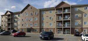 1212 Mountain Road - 3 Bedroom Apartment for Rent