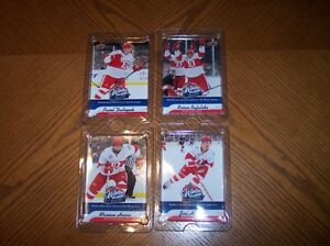 Detroit Red Wings - Winter Classic Cards
