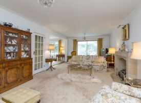 New Malden large house amazing offer