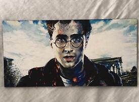 Harry Potter hand painted digital print