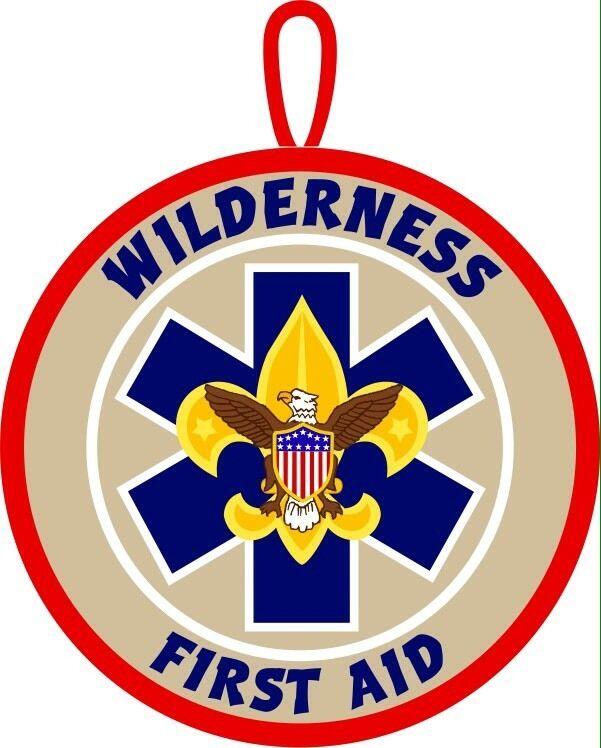 BSA Wilderness First Aid patch