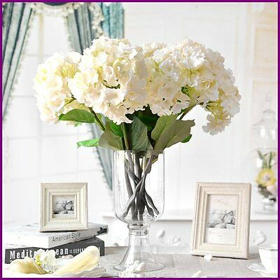 Fully Stocked Indoor Flowers Website Businessfree Domainhostingtraffic
