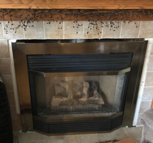 Propane fire place insert for sale.  Make us an offer!