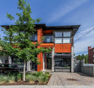 Gorgeous semi-detached in the heart of Westboro!