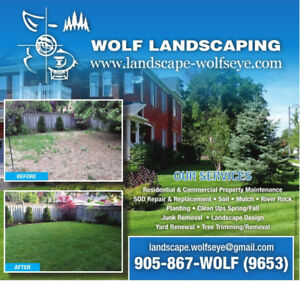 Wolf Landscaping - Sod Replacement - Mulch - Clean ups - Soil..