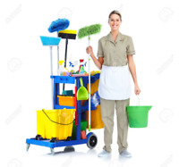 Cleaner needed in DT Toronto, 2-4x a week